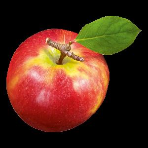 Freisteller Apfel