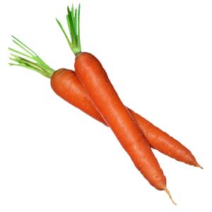 Freisteller Karotten