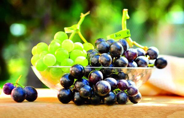 grüne und blaue Trauben auf einem Tisch