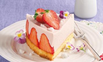 Kleiner Erdbeer Cheesecake