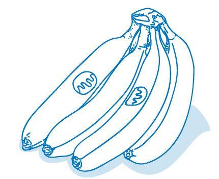 gezeichneter Bund Bananen