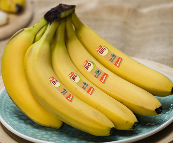 tegut fairbindet Bananen auf einem Teller