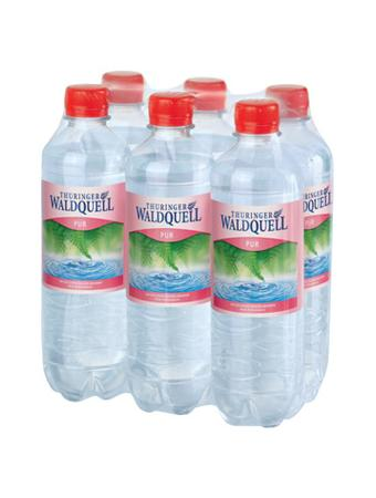 Darstellung von Thüringer Waldquell Mineralwasser pur 6er-Pack