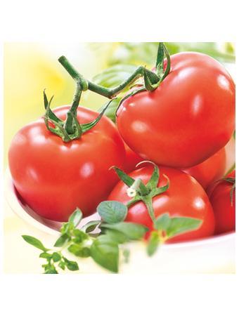 Darstellung von Tomaten