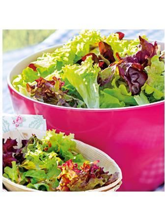 Darstellung von Verschiedene Salate
