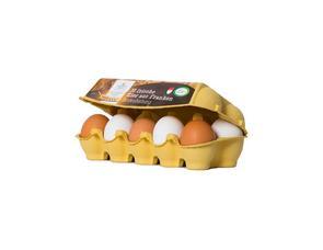 Darstellung von Bodenhaltung Eier