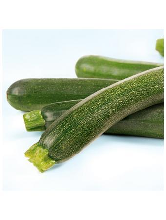 Darstellung von Zucchini
