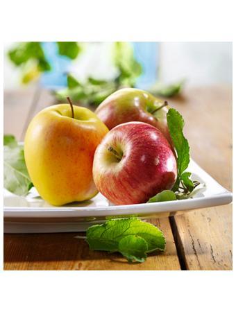 Darstellung von Äpfel