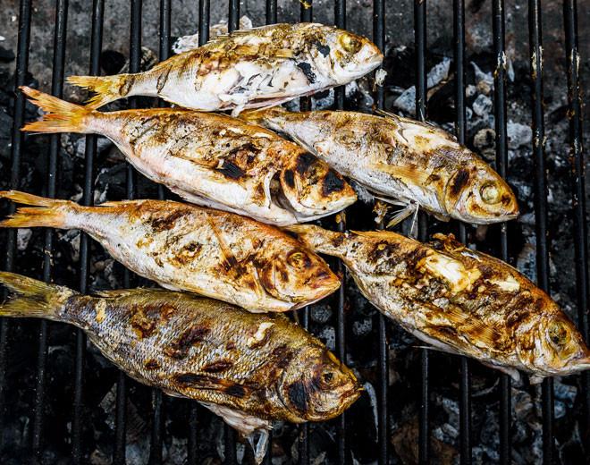 ... Fisch grillen
