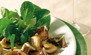 Gemischte Pilze und Feldsalat und Parmesanspänen