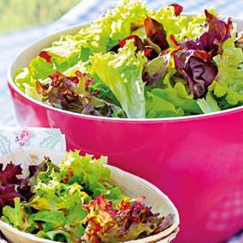 Verschiedene Salate