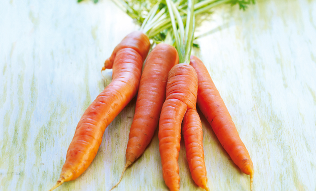 tegut... Karotten