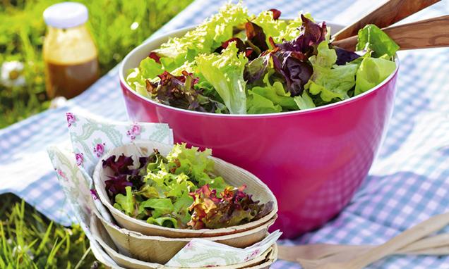 Blattsalat auf Picknickdecke im Gras
