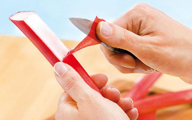 Der Rhabarber wird mit einem Messer geschält