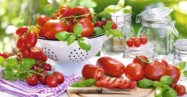 verschiedene tomaten mit basilikum